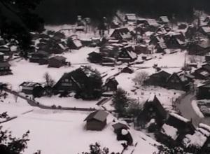 2月2日(土)ライブカメラより