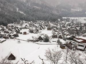 ちょっと白く復活 雪
