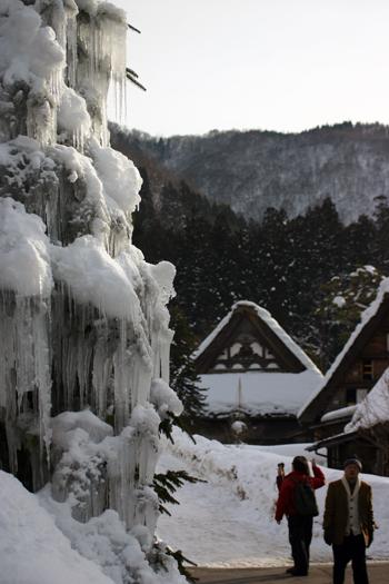 木が凍って氷柱