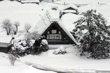 真っ白く茅葺き屋根に雪