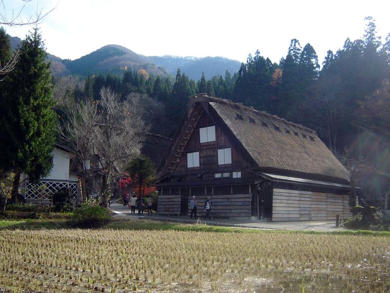 落葉木立遥かに雪化粧の峰々が輝き、冬支度が進む白川郷の冬は早くやってきます ⑥