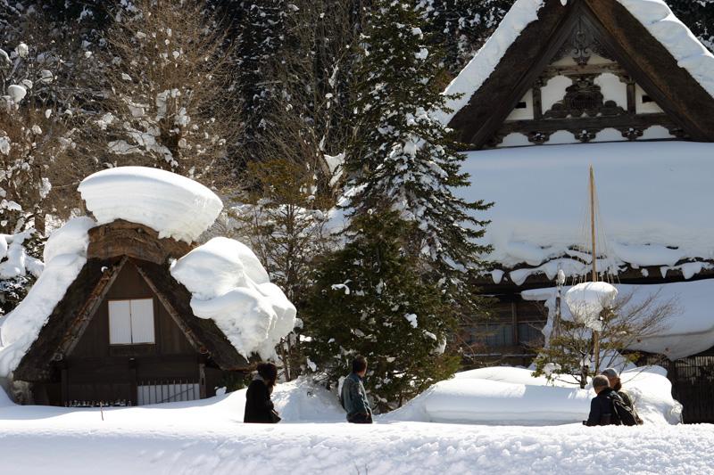 雪国ならではの視界すべてが真っ白に染まる銀世界を堪能!世界遺産 白川郷合掌集落 ⑥