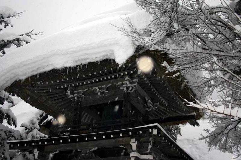 雪国ならではの視界すべてが真っ白に染まる銀世界を堪能!世界遺産 白川郷合掌集落 ⑦