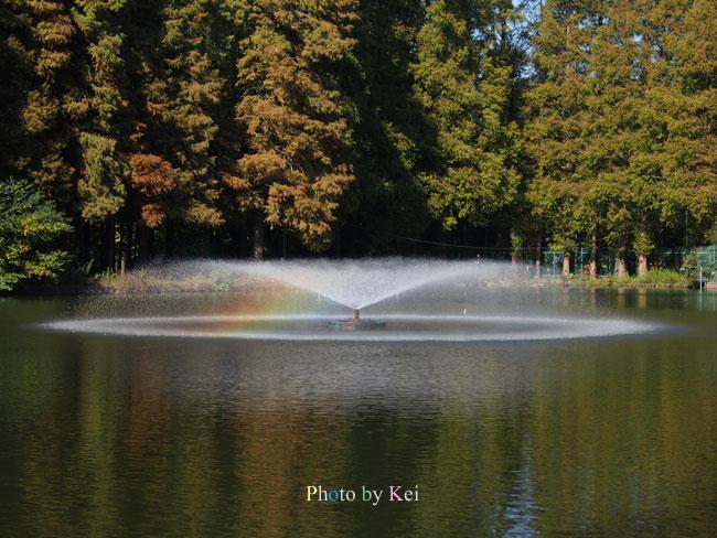 噴水の虹♪