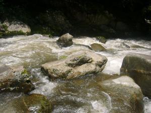 川の水濁る