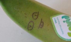 banankakudai300.jpg