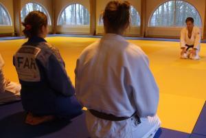 judo300new.jpg