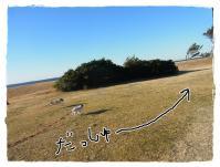 kn9_20130127103454.jpg