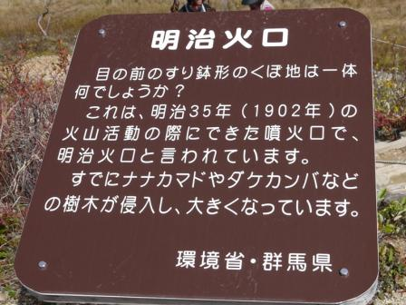 P1260912.jpg