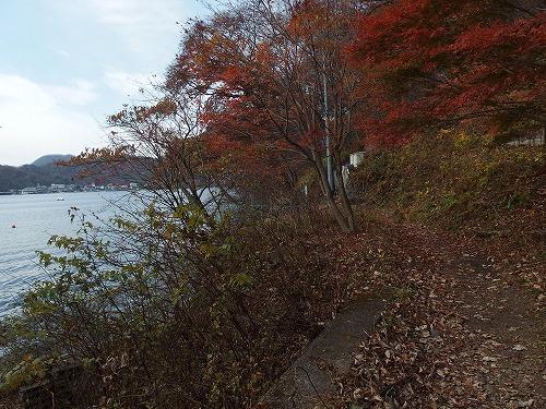 20141108_harunahuji-016.jpg