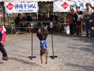 2010_11162010荵晏ケエ蠎オ0081_convert_20101117231300