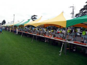 2013-7-7suika005.jpg