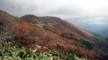 2013-10-26nagi (37)