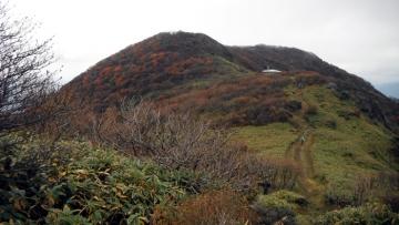 2013-10-26nagi (50)