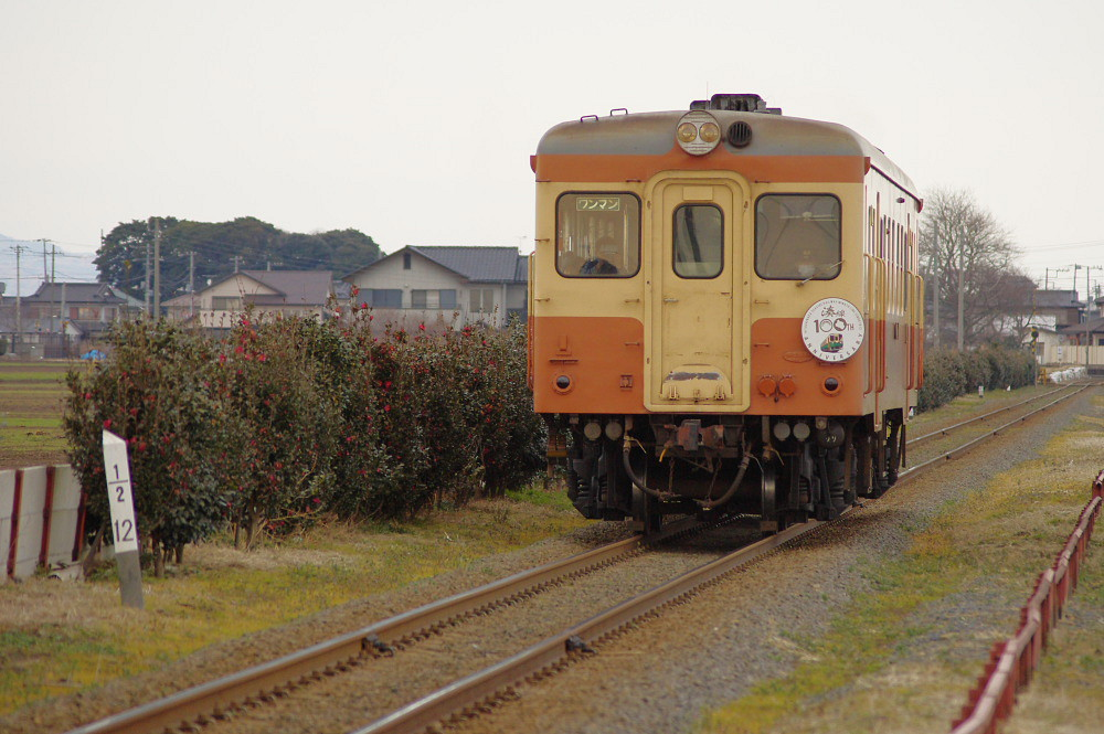 hitachinaka2014-7.jpg