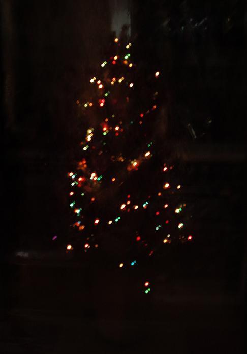 H23クリスマスツリー・ライトアップ (2)
