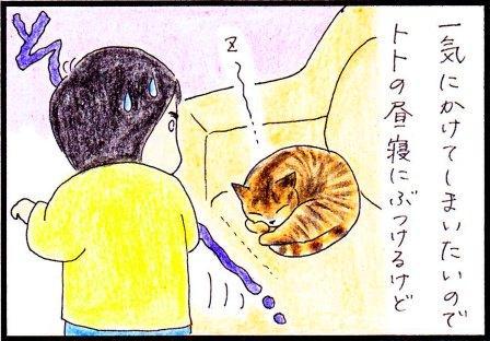 toto42-2.jpg