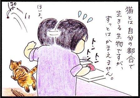 toto46-2.jpg