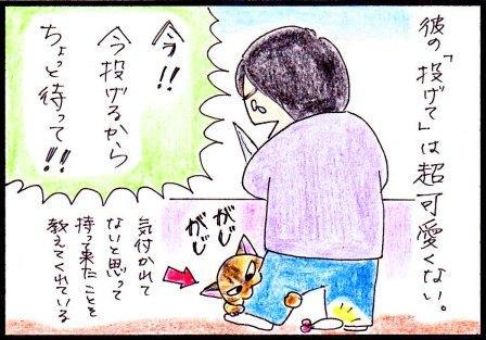 toto46-4.jpg