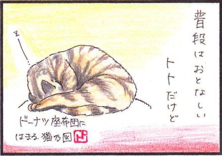 toto8-1.jpg