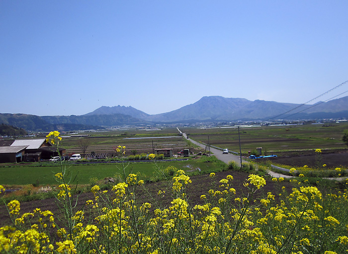 yuuraIMG_1402.jpg