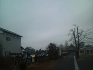 20110124071002.jpg