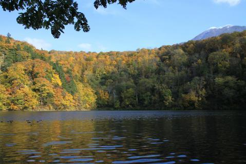 羊蹄山 半月湖