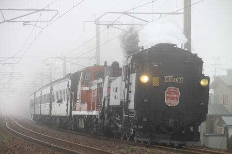 SLみなと室蘭140周年号 富浦 霧の中