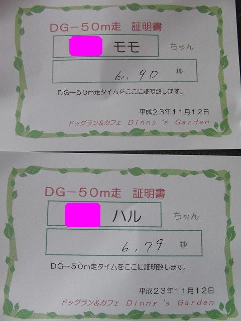 CIMG4651_20111112225240.jpg