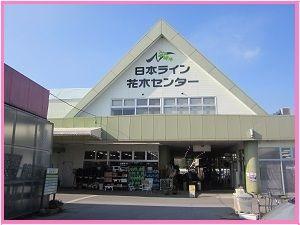 118 花木センター ブログ