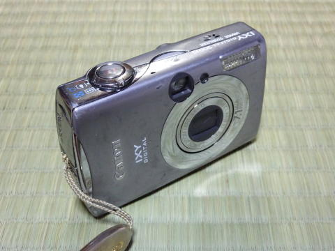 P1000084.jpg