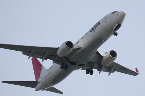 JAL B737-8002.jpg