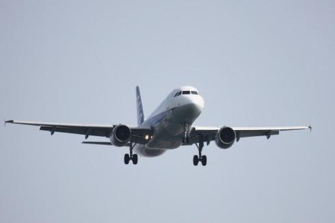 ANA A320-211.jpg