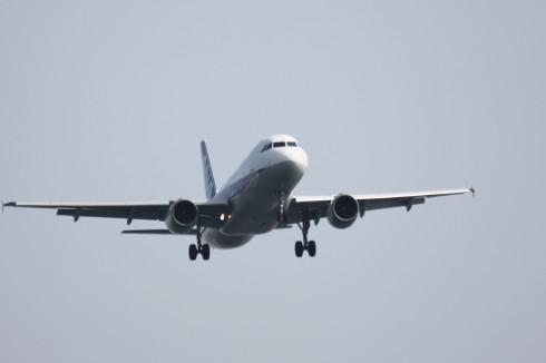 ANA A320-2112.jpg