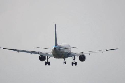 ANA A320-2113.jpg