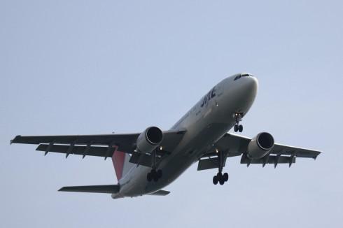 JAL A300-600R.jpg