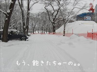 雪の公園0303