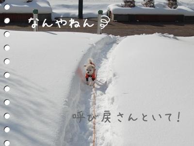 雪道40304