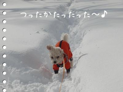 雪道10304