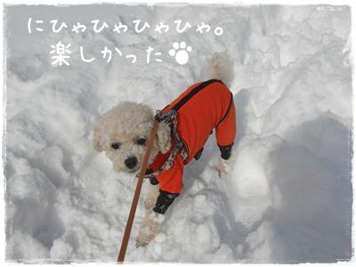 お散歩50305