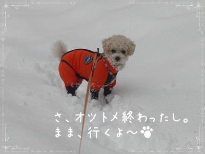 お散歩50310