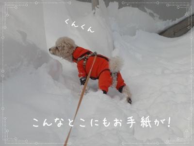 お散歩30310