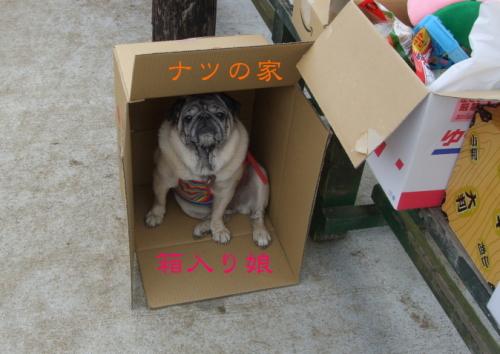 2012harunatsu.jpg