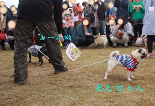 2012haruyokozuna.jpg
