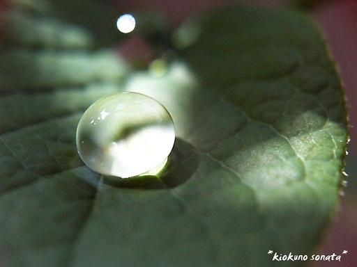 2007_0101_000414-PIC_0281 - コピー