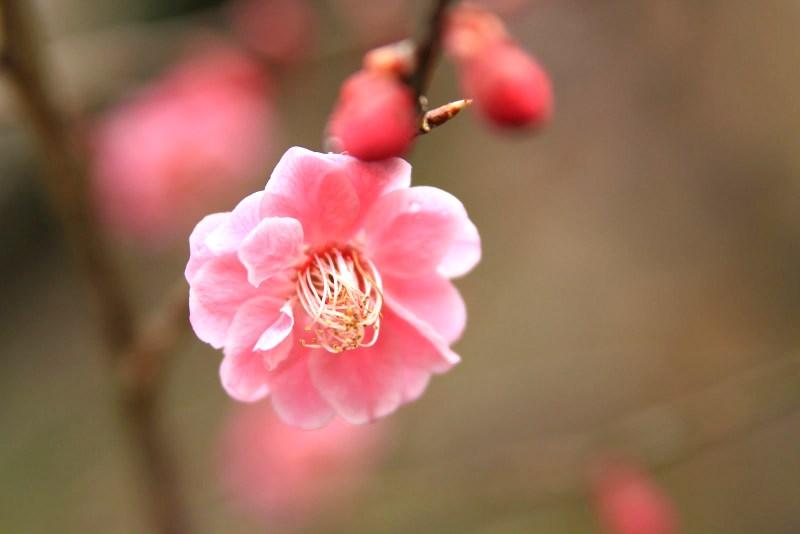 03-20120311_0201.jpg