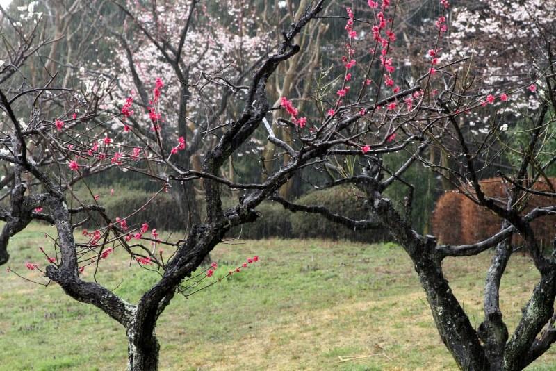 03-20120331_0057.jpg