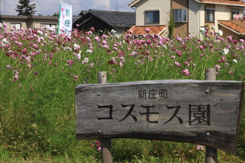 新庄20111016_0109