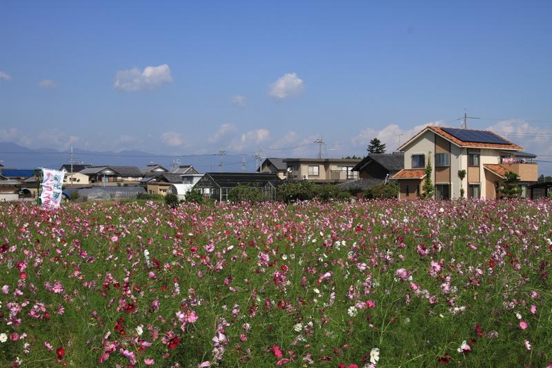 新庄20111016_0114