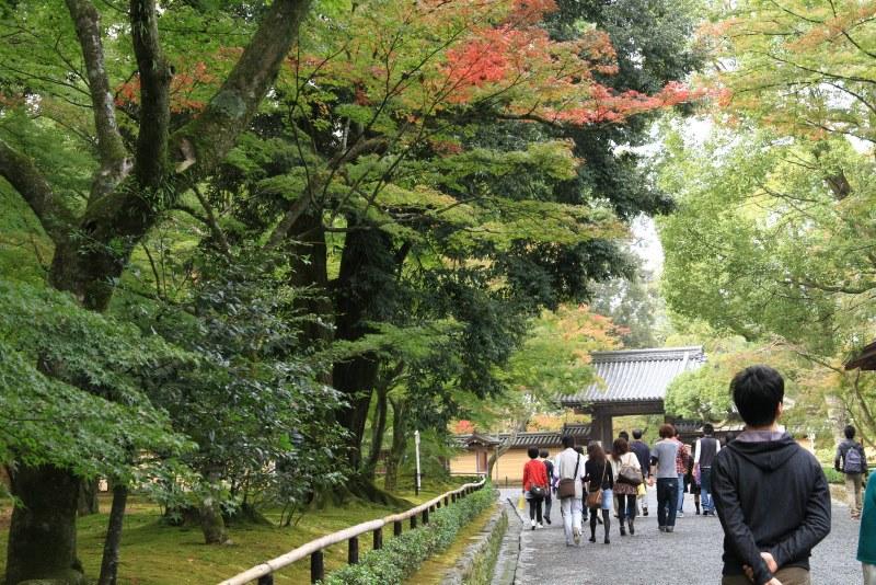 金閣寺20111103_0040